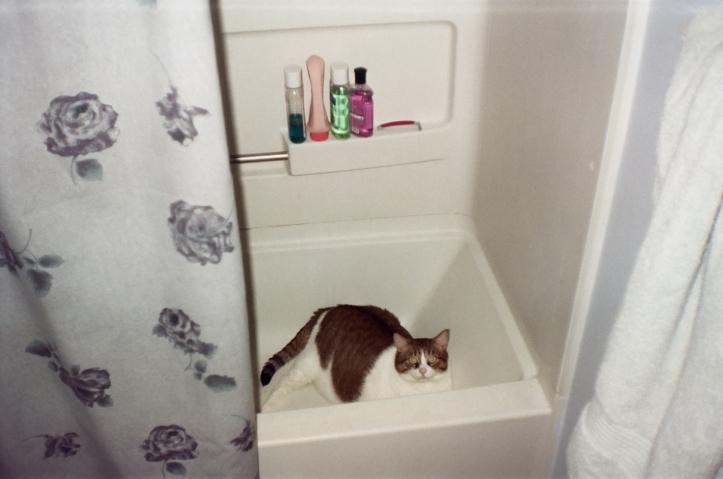 Vincent tub